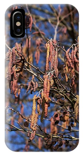 Deciduous iPhone Case - Alder (alnus Glutinosa) by Brian Gadsby/science Photo Library
