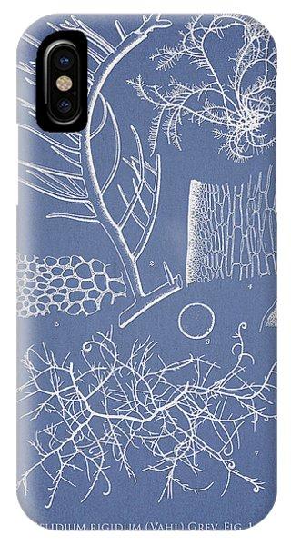 Alga iPhone X Case - Algae by Aged Pixel