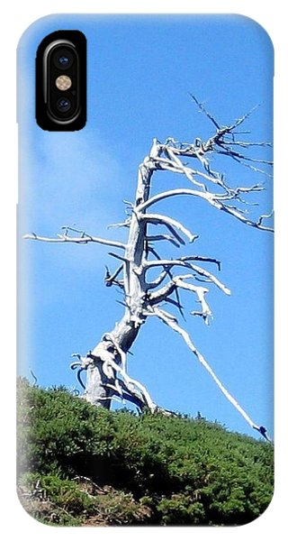 Alien Tree IPhone Case