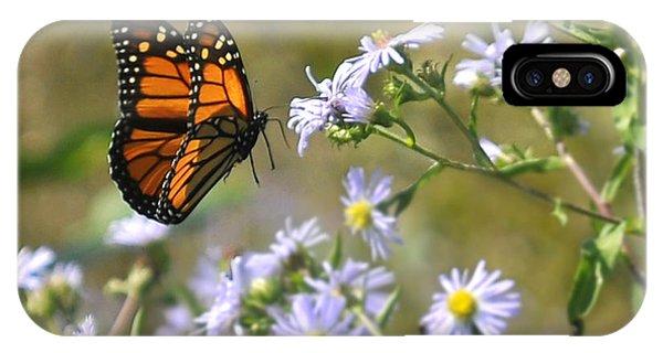 Alighting Monarch IPhone Case