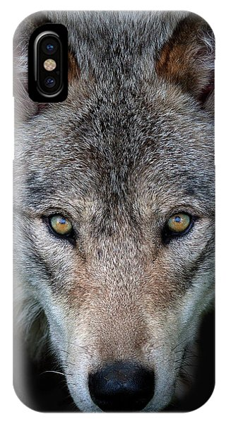 All The Better To See You - Timber Wolf Phone Case by Jim Cumming