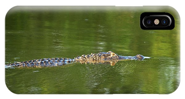 Alligator In Lake Martin Phone Case by Kelly Morvant