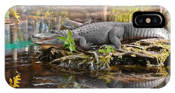 Alligator Mississippiensis IPhone Case