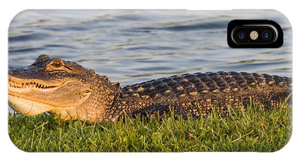 Alligator Smile IPhone Case