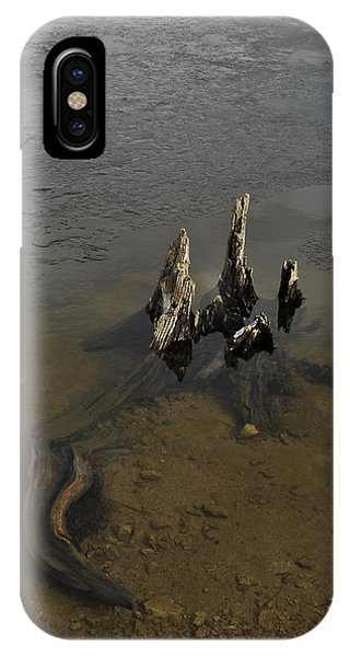 Alligator Stump IPhone Case