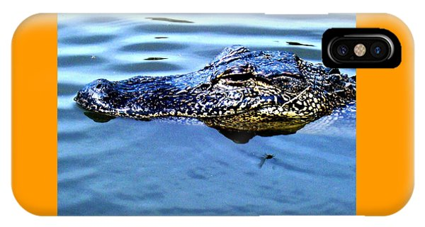 Alligator With Spider IPhone Case