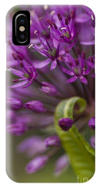 Allium Curl IPhone Case