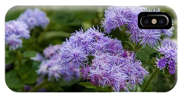Allium Purple Sensation IPhone Case