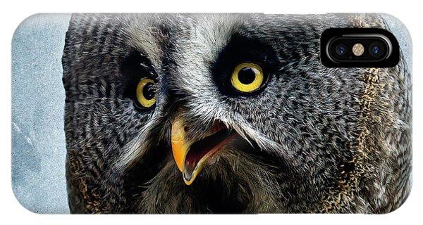 Allocco Della Lapponia - Tawny Owl Of Lapland IPhone Case