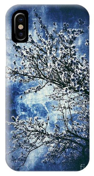 Almond Tree #2 Phone Case by Angela Bruno