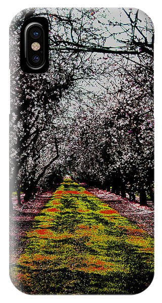 Almond Trees In Bloom IPhone Case
