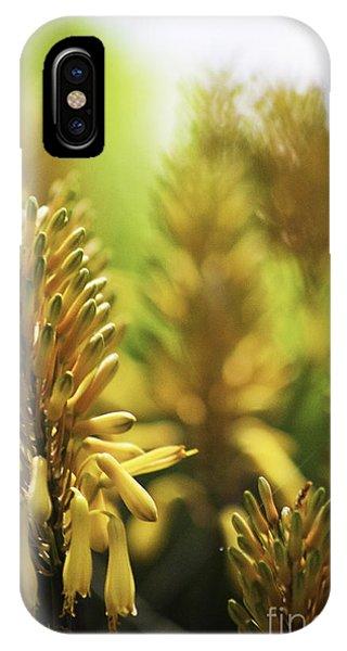 Aloe 'kujo' Plant IPhone Case