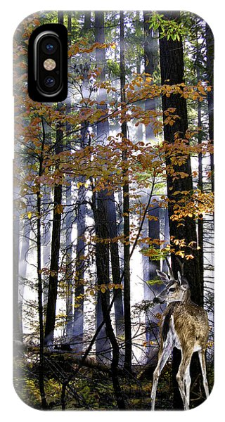 Alone In The Mist IPhone Case