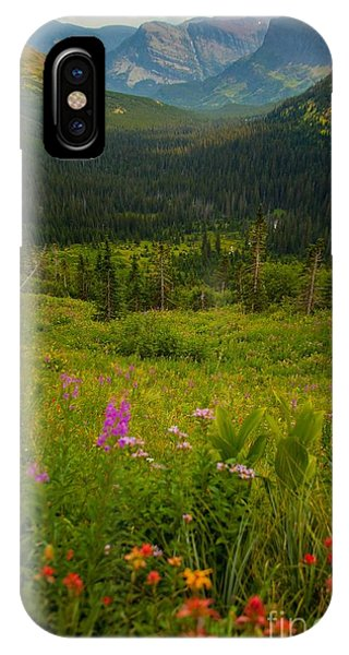 Along The Path To Iceburg Lake 17 Phone Case by Natural Focal Point Photography