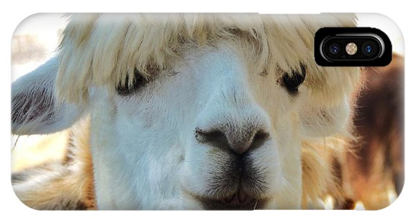 Alpaca Hair Do IPhone Case