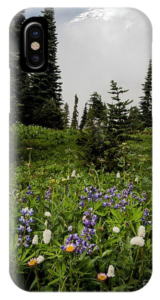 Alpine Beauty IPhone Case