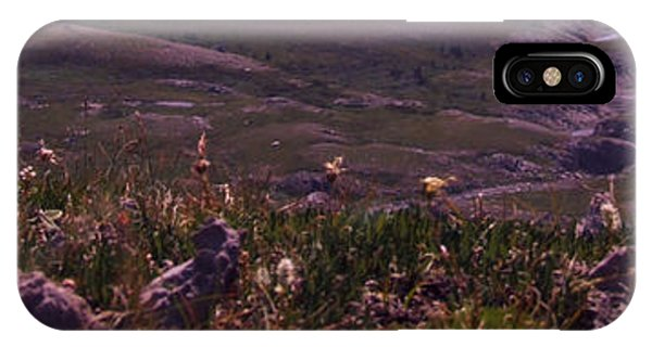 Alpine Floral Meadow IPhone Case