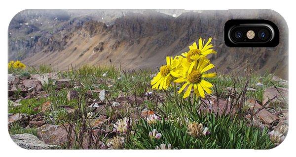 Alpine Flowers IPhone Case