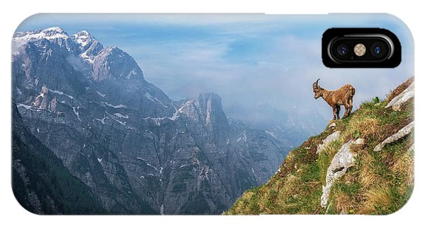 Alpine Ibex In The Mountains IPhone Case