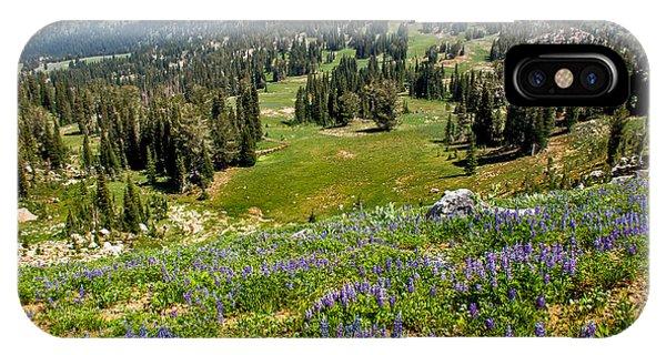 Alpine Meadow IPhone Case