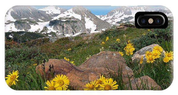 Alpine Sunflower Mountain Landscape IPhone Case