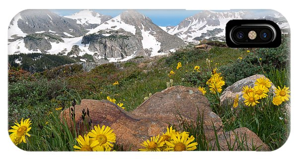 Alpine Sunflower Mountain Landscape IPhone Case