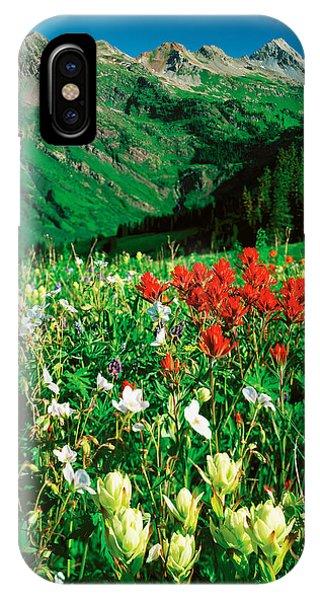 Scarlet Paintbrush iPhone Case - Alpine Wildflowers by James Steinberg