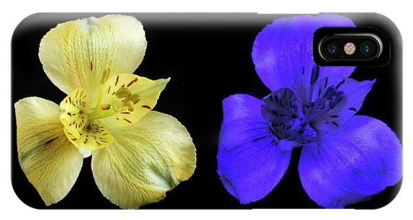 Alstroemeria Flowers In Uv And Daylight IPhone Case