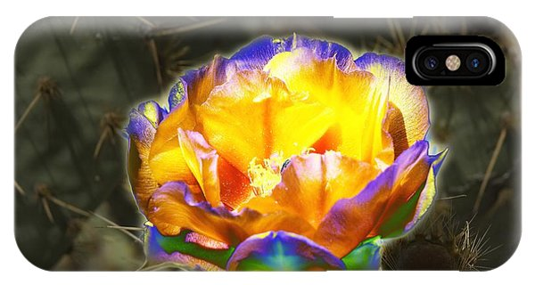 Altered Yellow Prickly Pear Flower IPhone Case