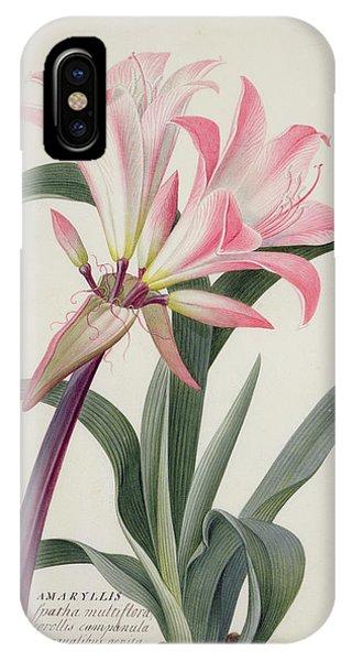 Lily iPhone Case - Amaryllis Belladonna, 1761 by Georg Dionysius Ehret