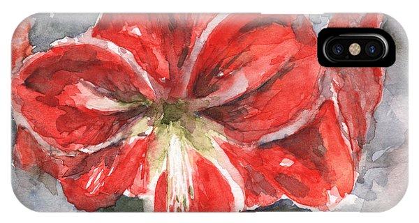 Amaryllis iPhone Case - Amaryllis by Claudia Hafner