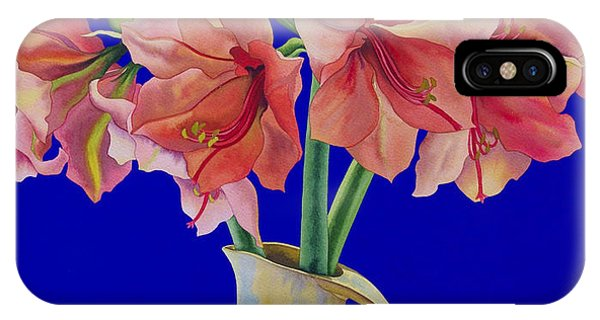 Amaryllis iPhone Case - Amaryllis In A Jug by Christopher Ryland