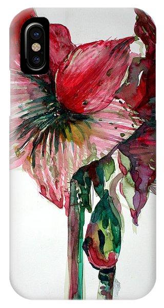 Amaryllis iPhone Case - Amaryllis by Mindy Newman