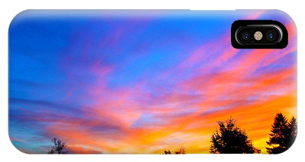 Amazing Sunset Phone Case by Lisa Rose Musselwhite