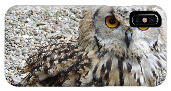 Amber Eyes Owl IPhone Case