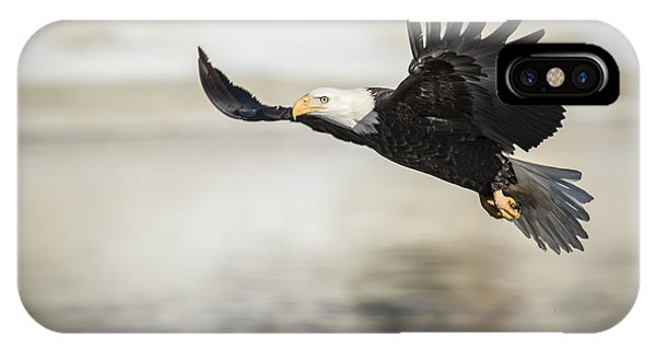 American Bald Eagle 2015-22 IPhone Case