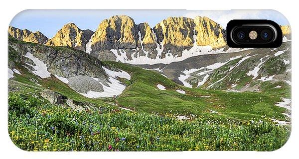 Treeline iPhone Case - American Basin Wildflowers by Aaron Spong
