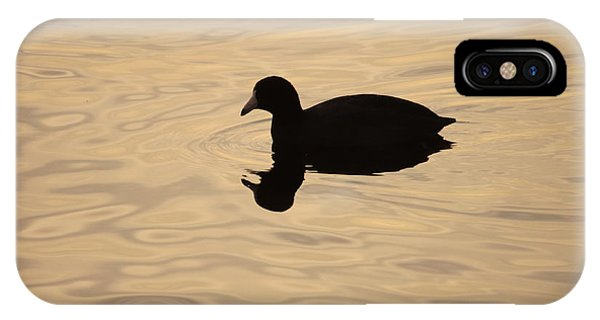 American Coot Silhouette IPhone Case