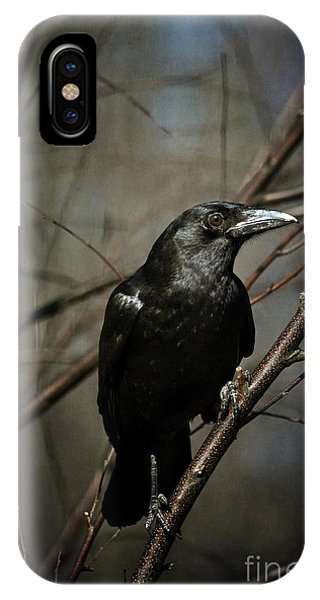 American Crow IPhone Case