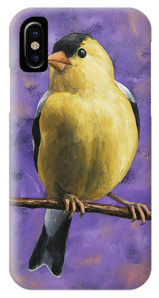 Finch iPhone Case - American Goldfinch by Crista Forest