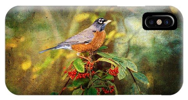 Avian iPhone Case - American Robin - Harbinger Of Spring by Lianne Schneider