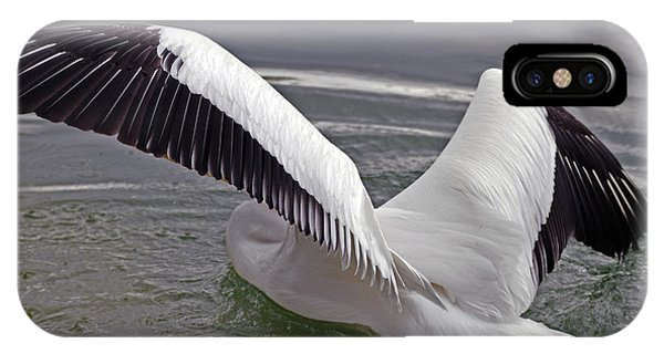 American White Pelican IPhone Case