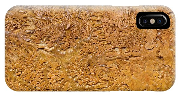 Ammonite Fossil Shell Phone Case by Pascal Goetgheluck/science Photo Library