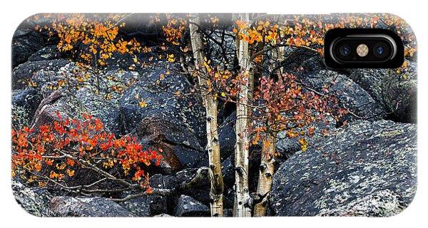 Boulder iPhone Case - Among Boulders by Chad Dutson