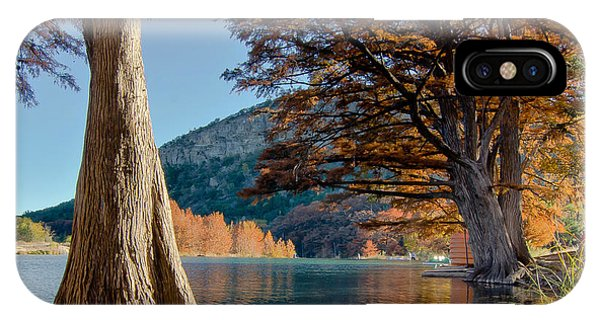 Among The Cypress Trees IPhone Case