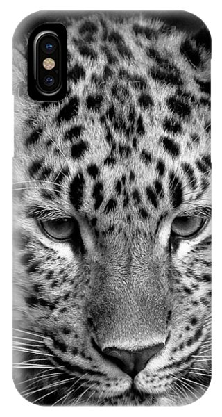 Amur Leopard In Black And White IPhone Case
