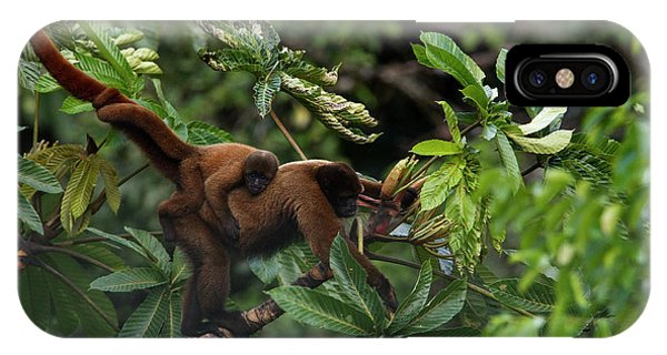 An Adult Woolly Monkey With Young IPhone Case