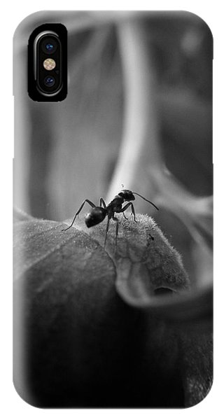 An Ant's Life IPhone Case