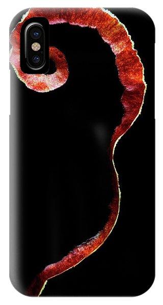 An Apple Peel IPhone Case