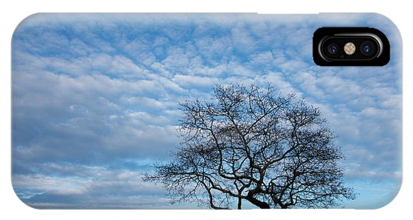 iPhone Case - An Oak Tree On Masons Island by Michael Melford